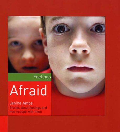 9781842344545: Afraid (Feelings)