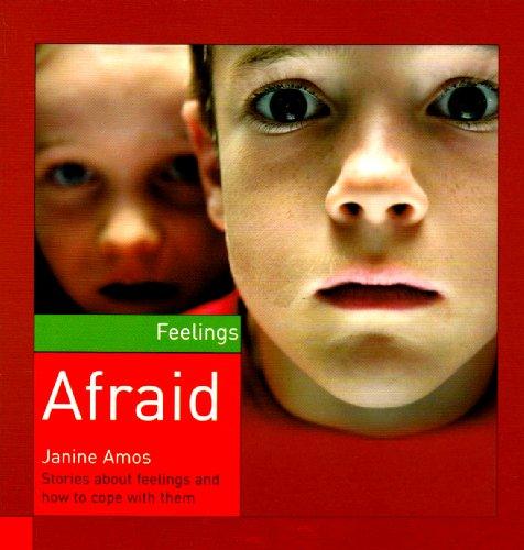 9781842344811: Afraid (Feelings)