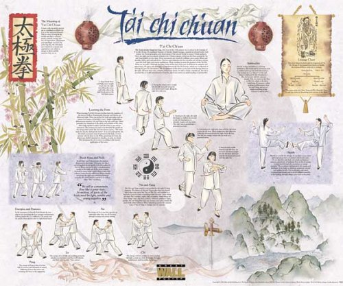9781842361795: Tai Chi Poster