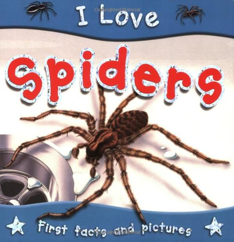 9781842368244: I Love Spiders