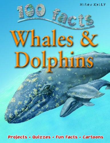 9781842369647: Whales and Dolphins