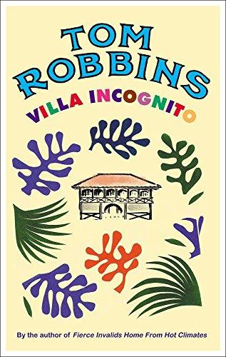 9781842431993: Villa Incognito