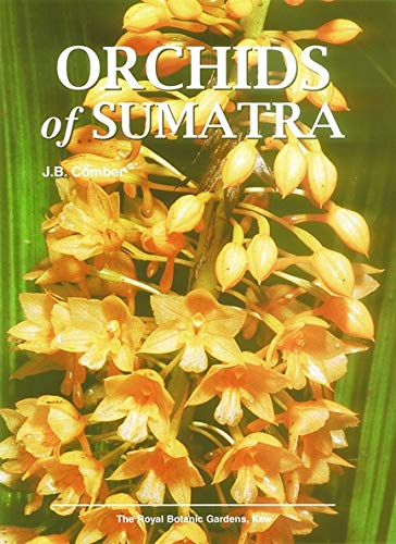 9781842460276: Orchids of Sumatra