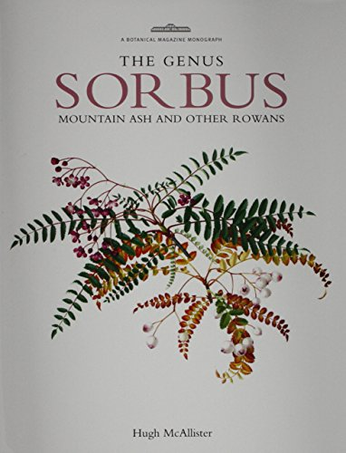 Genus Sorbus: mountain ash and other rowans: McAllister, Hugh A.
