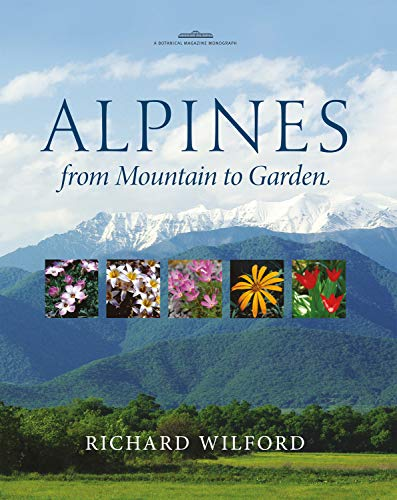 Alpines, from Mountain to Garden (Hardcover): Richard Wilford