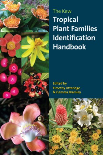 9781842463819: The Kew Tropical Plant Families Identification Handbook