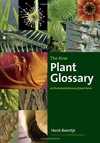 9781842464229: The Kew Plant Glossary: An Illustrated Dictionary of Plant Terms