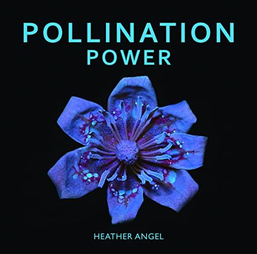9781842466063: Pollination Power