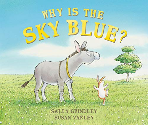 Why Is the Sky Blue?: Sally Grindley