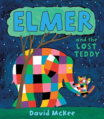 9781842707494: Elmer and the Lost Teddy