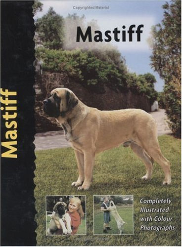Mastiff (Pet Love) (1842860003) by Christina De Lima-Netto
