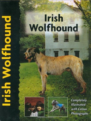 Irish Wolfhound (Pet love) (1842860240) by Alice Kane