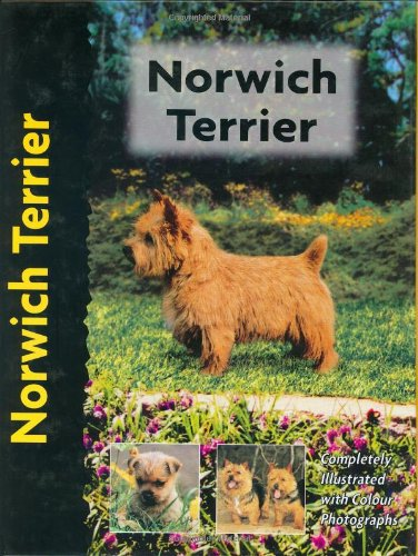 Norwich Terrier (Pet Love) (1842860577) by Alice Kane