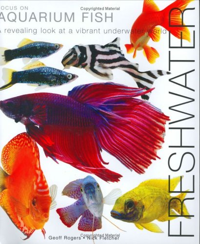 Focus on Aquarium Fish: Freshwater: Rogers, Geoff, Fletcher, Nick