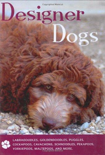 9781842861394: Designer Dogs