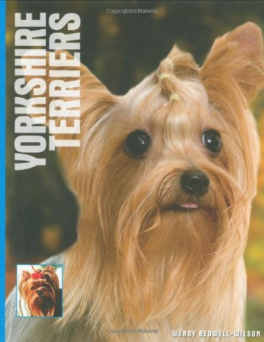 9781842861622: Yorkshire Terriers