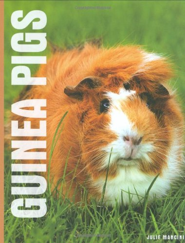 9781842861806: Guinea Pigs