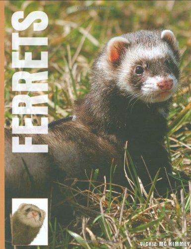 9781842861899: Ferrets