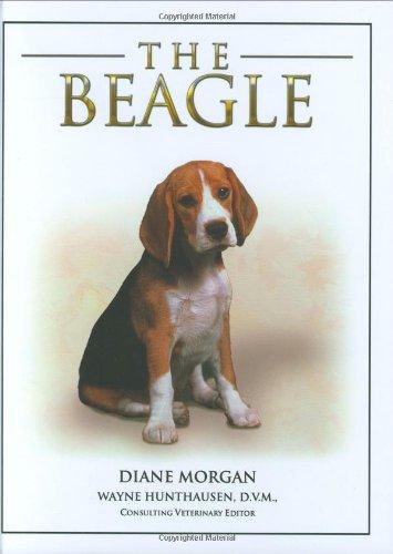 9781842861981: Beagle