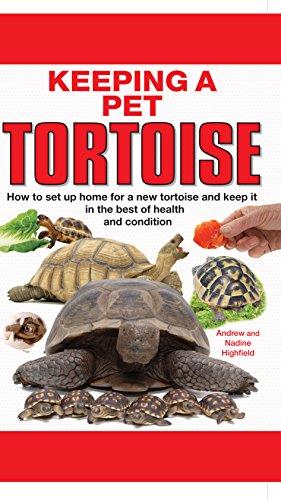 9781842862131: Keeping a Pet Tortoise