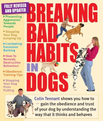 9781842862285: Breaking Bad Habits in Dogs