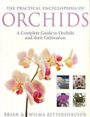 9781843095293: The Practical Encyclopedia of Orchids