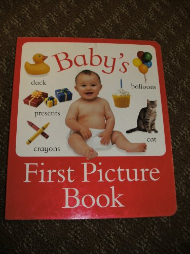 9781843224679: Baby's First Picture Book