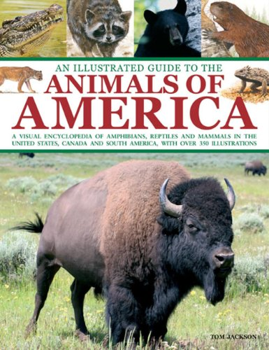 9781843227694: An Illustrated Guide To The Animals of America: A visual encyclopedia of amphibians, reptiles and mammals in the United States, Canada and South America, with over 350 illustrations