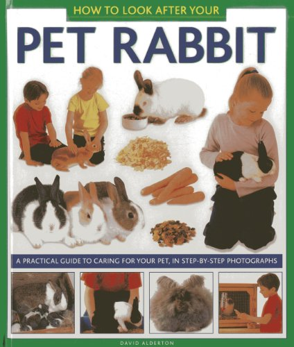 9781843228349: How to Look After Your Pet Rabbit: A Practical Guide to Caring for Your Pet, In Step-by-Step Photographs