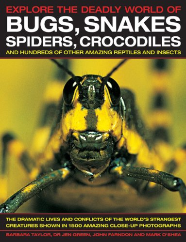 Explore The Deadly World of Bugs, Snakes, Spiders, Crocodiles: The dramatic lives and conflicts of ...