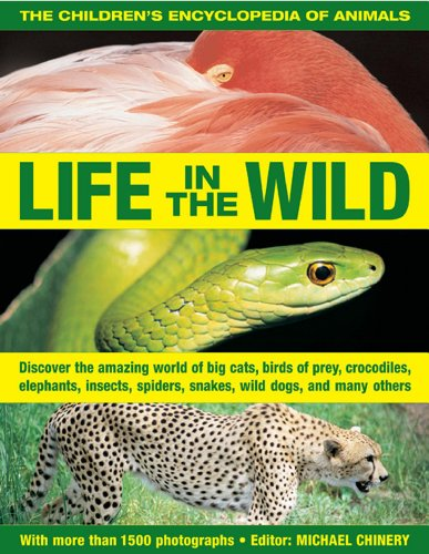 9781843228639: The Children's Encyclopedia of Animals: Life In The Wild: Discover the amazing world of big cats, birds of prey, crocodiles, elephants, insects, spiders, snakes, wild dogs and many others