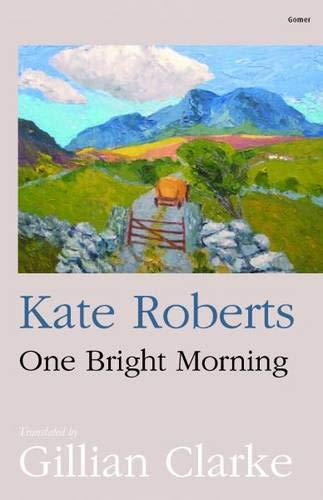 9781843239598: One Bright Morning