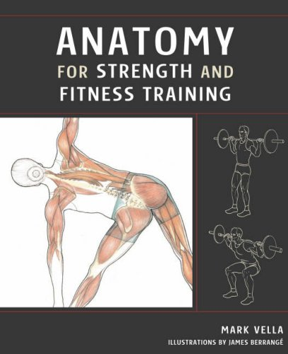 9781843308751: Anatomy for Strength and Fitness Training