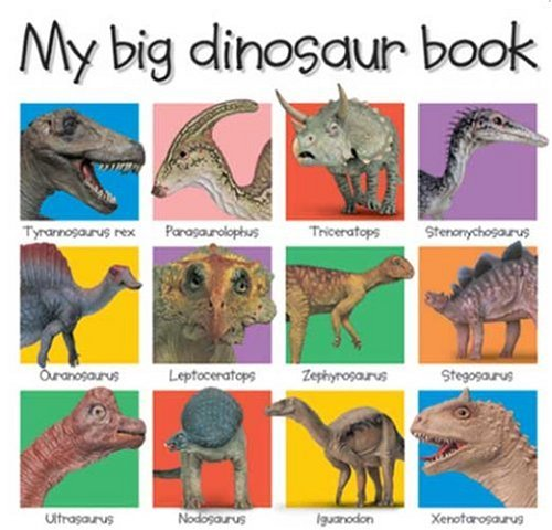 9781843321897: My Big Dinosaur Book (My Big Board Books)