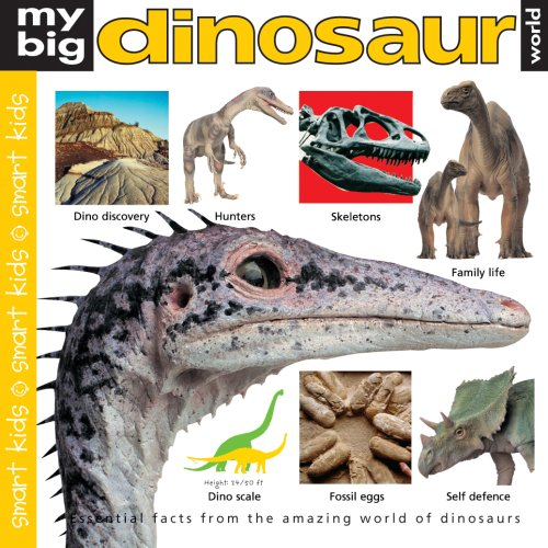 9781843325949: My Big Dinosaur World (Smart Kids)