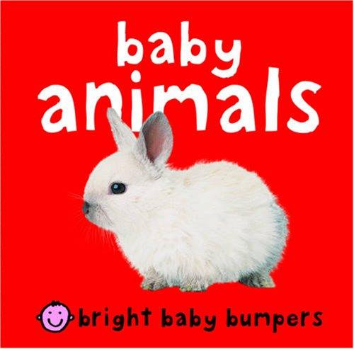 9781843327905: Baby Animals