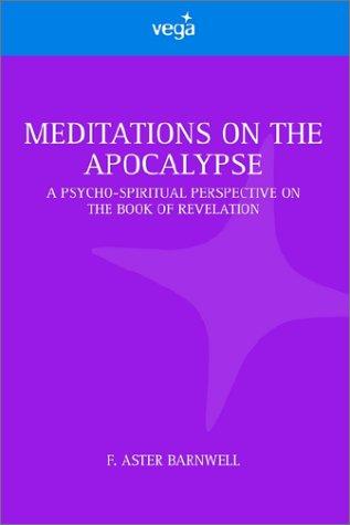 9781843336815: Meditations on the Apocalypse
