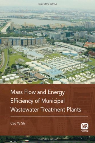 9781843393825: Mass Flow and Energy Efficiency of Municipal Wastewater Treatment Plants