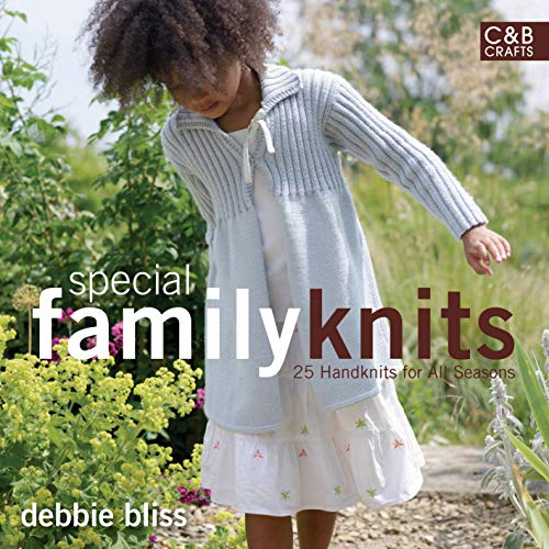 Special Family Knits: 25 Handknits for All Seasons: Bliss, Debbie