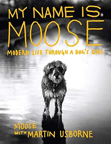 9781843406266: My Name Is Moose: Modern Life Through a Dog's Eyes