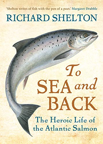 9781843547846: To Sea and Back: The Heroic Life of the Atlantic Salmon