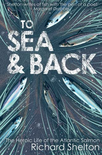 9781843547853: To Sea & Back: The Heroic Life of the Atlantic Salmon