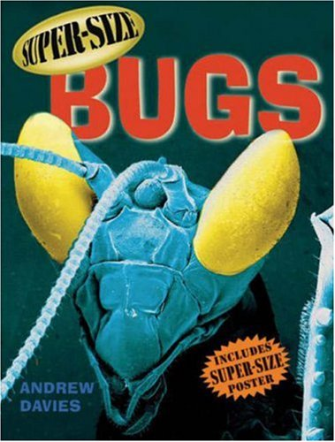 9781843650942: Super-size Bugs