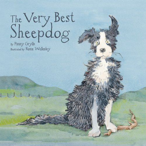 9781843652199: The Very Best Sheepdog