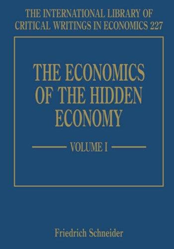 The Economics of the Hidden Economy (Hardback)
