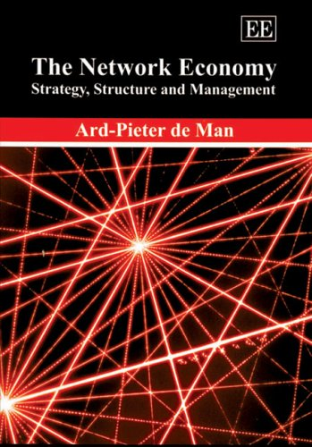 9781843764946: The Network Economy: Strategy, Structure And Management