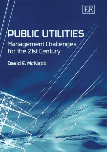 9781843768739: Public Utilities: Management Challenges for the 21st Century