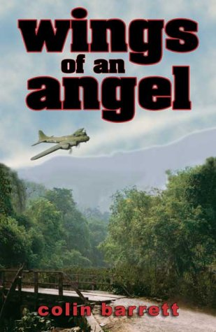 9781843861522: Wings of an Angel