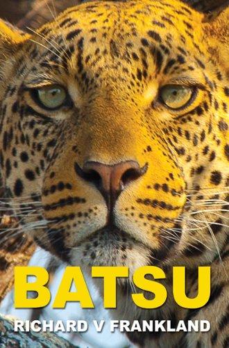 9781843868590: Batsu