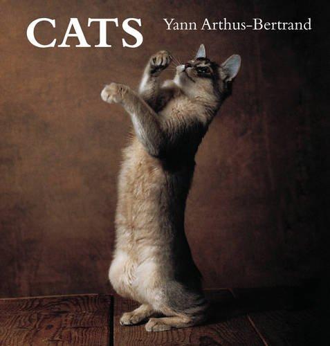 Cats (Spanish Edition): Yann Arthus -. Bertrand